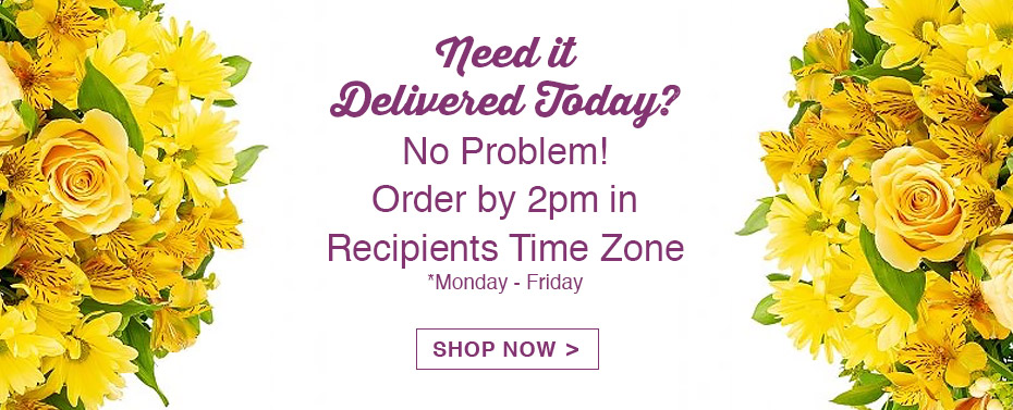 Need it Delivered Today? No Problem! Order by 2pm in recipients time zone monday-friday shop now!