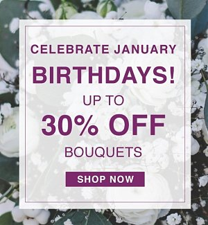 Celebrate January Birthdays! Up to 30% off Bouquets. Shop Now.